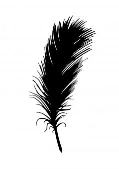 Free Stock Photo of Feather Silhouette