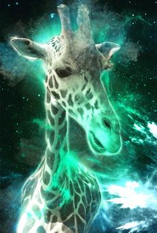 Free Stock Photo of Giraffe in cosmos