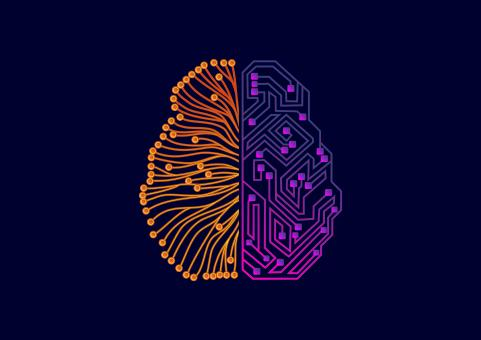 Free Stock Photo of Two-sided Brain - Organic and Artificial Intelligence