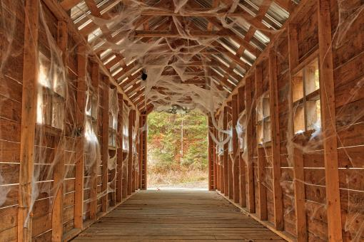 Free Stock Photo of Cobweb Covered Bridge