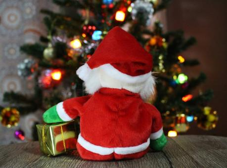 Free Stock Photo of Santa holds wrapped present, sits and looks at Christmas Tree