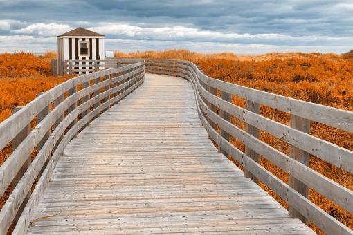 Free Stock Photo of Amber Beach Boardwalk
