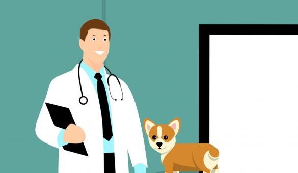 Free Stock Photo of Animal Clinic Illustration