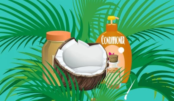 Free Stock Photo of Coconut Cosmetics
