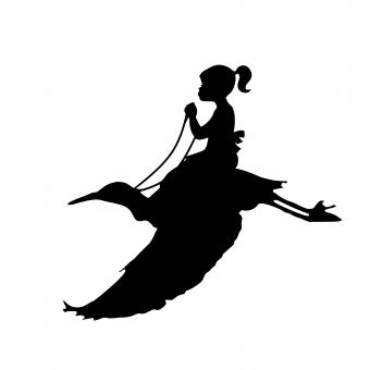 Free Stock Photo of Silhouette of Girl Riding Bird