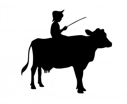 Free Stock Photo of Boy Riding Cow Silhouette
