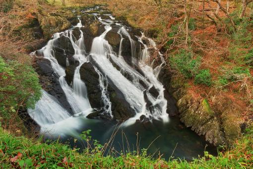 Free Stock Photo of Welsh Swallow Falls