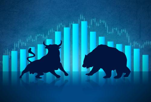 Free Stock Photo of Bull versus Bear - Financial Markets Concept
