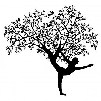Free Stock Photo of Yoga Tree Silhouette