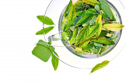 Free Stock Photo of Green Tea Leaves in Cup