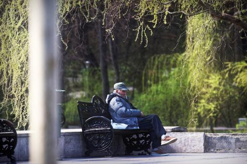 Free Stock Photo of Old Man Sitting in the Park