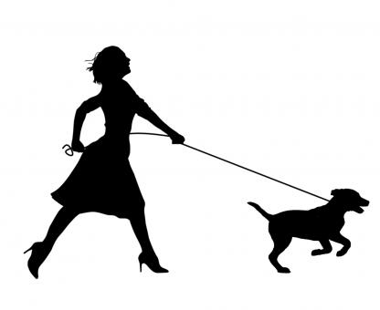 Free Stock Photo of Silhouette of Woman Running with Dog