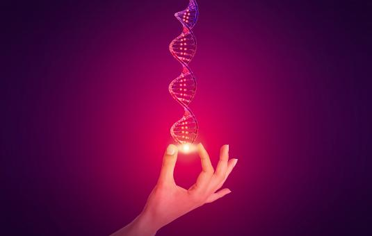 Free Stock Photo of DNA - Genetic Sequencing Concept - Red Queen
