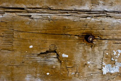 Free Stock Photo of Old Cracked Timber Texture