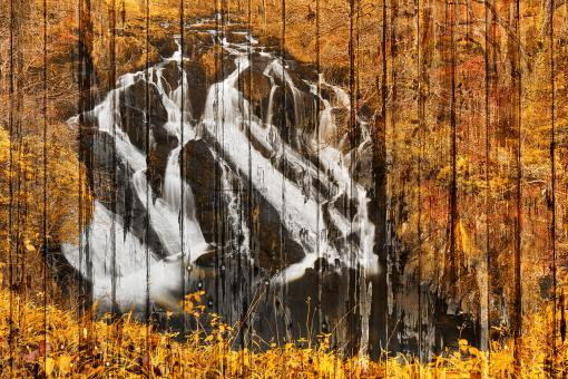 Free Stock Photo of Golden Grunge Panels of Swallow Falls