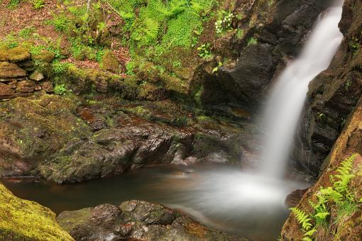 Free Stock Photo of Dolwyddelan Spring Falls