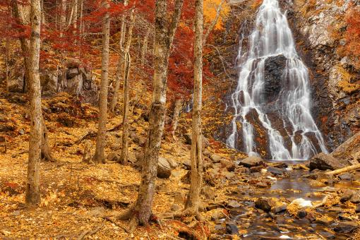 Free Stock Photo of Hays Autumn Fantasy Falls