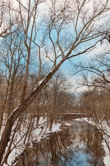 Free Stock Photo of Little Monocacy Winter River