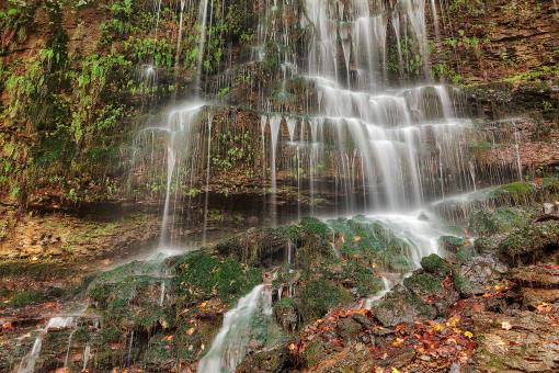 Free Stock Photo of Autumn Moss Wall Waterfall
