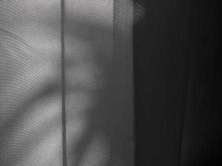 Free Stock Photo of Abstract Shadow on Curtain