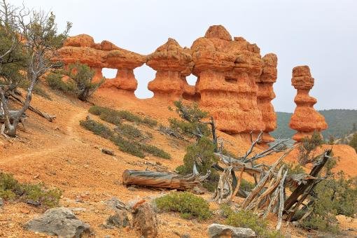 Free Stock Photo of Red Canyon Hoodoo Hike