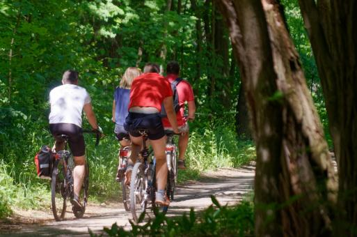 Free Stock Photo of Bicyclists in Forest