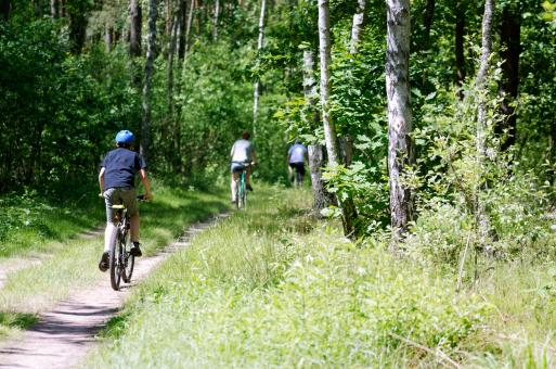 Free Stock Photo of Bicyclists in the forest