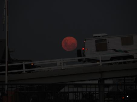 Free Stock Photo of Red moon over Melbourne evening sky