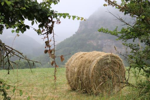 Free Stock Photo of Hay bale in the countryside