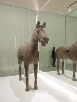 Free Stock Photo of Horse Statue in Museum