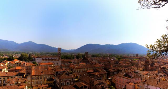 Free Stock Photo of Lucca - Italy - View From Guinigi Tower