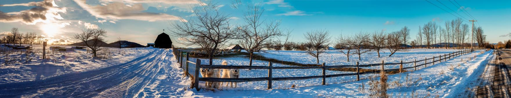 Free Stock Photo of Farm in Winter - Panorama