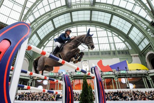 Free Stock Photo of Rider jumping in the grand palais in Paris