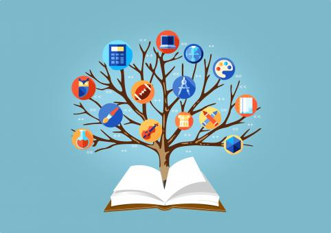 Free Stock Photo of Education Concept - Learning Concept - With Tree of Knowledge