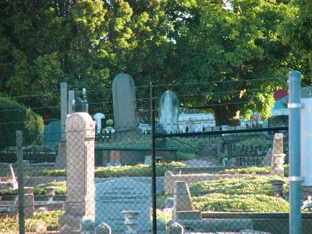 Free Stock Photo of View of an old cemetery behind wire fence