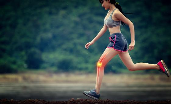 Free Stock Photo of Sports Injuries - Knee Injury - Orthopedics