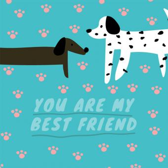 Free Stock Photo of You Are My Best Friend