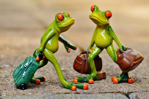 Free Stock Photo of Frogs carrying luggage