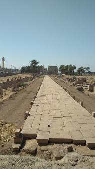 Free Stock Photo of Ancient Stone Road in Luxor