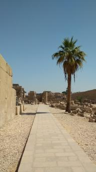 Free Stock Photo of Stone Road in Luxor City, Egypt