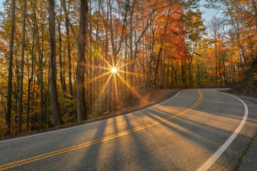 Free Stock Photo of Autumn Sunburst Road - Tail of the Dragon