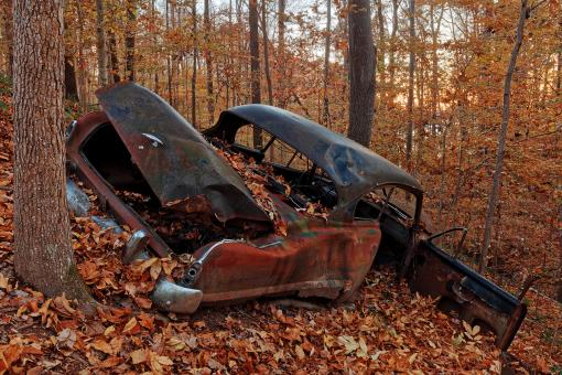 Free Stock Photo of Autumn Forest Car Wreck