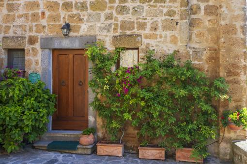 Free Stock Photo of Brown door with flower boxes