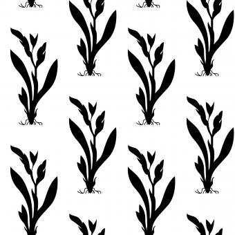 Free Stock Photo of Floral Nature Seamless Vector Pattern