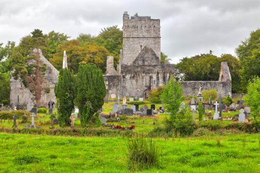 Free Stock Photo of Muckross Abbey