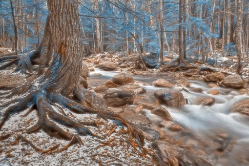 Free Stock Photo of Sabbaday Soft Winter Brook