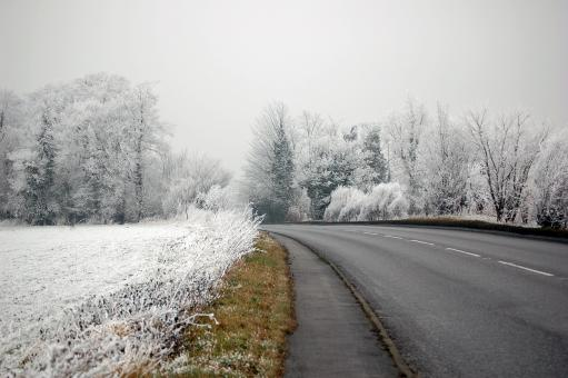 Free Stock Photo of The Road to the Frozen Forest