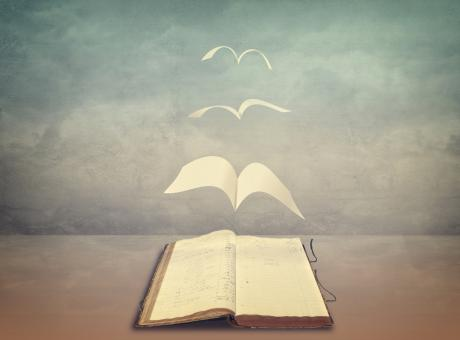 Free Stock Photo of Pages Flying Out of Old Book - Wisdom - Freedom in Knowledge