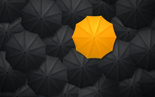 Free Stock Photo of Yellow Umbrella Contrasting With Black Umbrellas