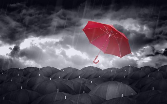 Free Stock Photo of Red Colorful Umbrella and Black Umbrellas - Being Different